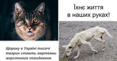 Зі знущань над тваринами починається...