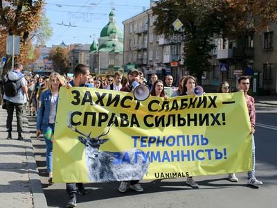 Понад 200 людей вийшли на Всеукраїнський...